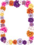 Blumen-Rand Stockbild
