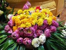 Blumen, Ringelblumen, Lotos, Banane, Kokosnuss oder Frucht für die Anbetung in Thailand-Tempel an guten Rutsch ins Neue Jahr cere stockbild