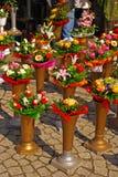 Blumen in Salz-QuadratWroclaw Stockbilder