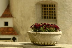 Blumen-Schüssel Lizenzfreie Stockfotografie