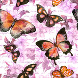 Blumen, Schmetterlinge, Anmerkung des Handschriftlichen Textes watercolor Nahtloses Muster vektor abbildung
