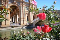 Blumen in Sevilla Lizenzfreies Stockfoto
