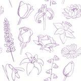 Blumen skizzieren nahtloses Vektormuster Lizenzfreie Stockfotos