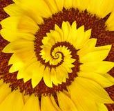 Blumen-Spirale Stockbild