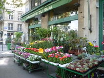 Blumen-Stand in Paris Stockfotos