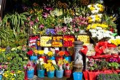 Blumen-Strömungsabriß Stockfoto