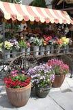 Blumen-Strömungsabriß Lizenzfreie Stockfotografie