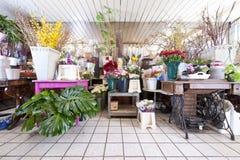 Blumen-System Lizenzfreie Stockfotos