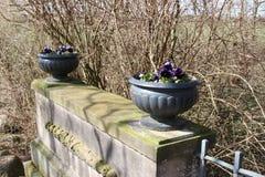 Blumen-Töpfe lizenzfreies stockbild