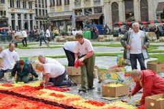 Blumen-Teppich auf Grand Place während des Regens Stockfotos