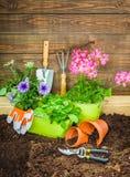 Blumen-Topf mit roten Blumen und Gartenarbeitgeräten Lizenzfreie Stockfotos