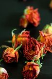 Blumen u Stockfoto