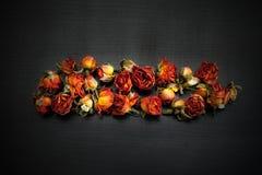 Blumen u Lizenzfreie Stockbilder