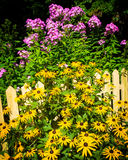 Blumen umgeben einen gelben Palisadenzaun lizenzfreie stockbilder