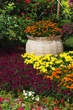 Blumen und Anlagen des botanischen Gartens vektor abbildung