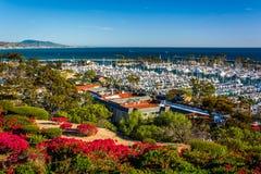 Blumen und Ansicht des Hafens vom Erbe parken in Dana Point Stockbild
