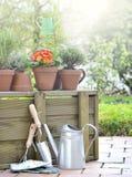 Blumen und aromatische Kräuter eingemacht im Garten stockbild