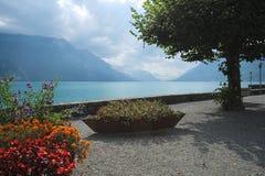 Blumen und Bäume entlang der Promenade von Brienz, die Schweiz stockbilder