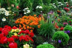 Blumen und Bäume im Garten Stockfoto