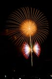 Blumen- und Basisrecheneinheitsfeuerwerk Stockfoto