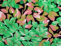 Blumen und Blätter Stockfotografie