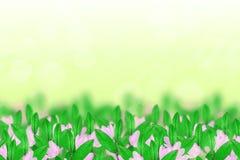 Blumen und Blätter lizenzfreies stockbild
