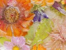 Blumen und Blätter eingefroren Lizenzfreie Stockfotografie