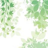 Blumen-und Blatt-Hintergrund Stockfotos