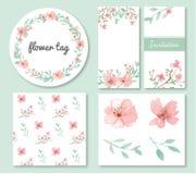 Blumen- und Blattdesignsatz Stockfoto