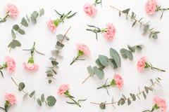 Blumen und eucaaliptus Zusammensetzung Muster gemacht von den verschiedenen bunten Blumen auf weißem Hintergrund Flaches gelegtes stockfotos