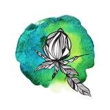 Blumen und Federn in boho Art auf Aquarellhintergrund Stockfotografie