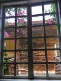 Blumen und Fenster lizenzfreie stockfotografie
