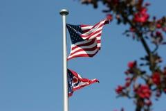 Blumen und Freiheit II Lizenzfreies Stockfoto