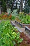 Blumen- und Gemüsegarten Lizenzfreies Stockfoto