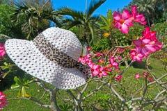 Blumen und Hut Stockbilder
