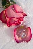 Blumen und Juwelier stockfoto