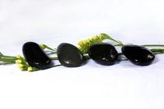 Blumen und Kiesel Lizenzfreie Stockfotos