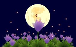 Blumen und Leuchtkäfer unter dem Mondschein-illustra Stockfoto