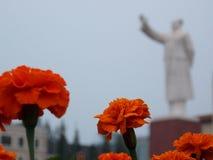 Blumen und Mao Stockfoto