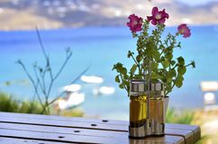 Blumen und Meer Stockbild