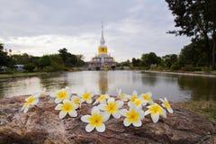 Blumen und Nadoon-Pagode Lizenzfreies Stockfoto