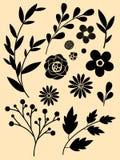 Blumen- und Niederlassungssatz Lizenzfreies Stockfoto