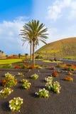 Blumen und Palmen entlang einer Straße zu Yaiza-Dorf Stockfotografie