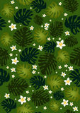Blumen und Philodendronblätter nahtlos Stockfotos
