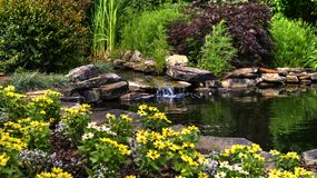 Blumen und Teich Lizenzfreies Stockbild