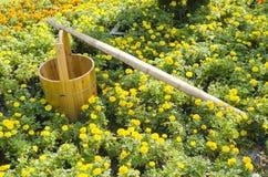 Blumen und Tonne Stockfoto
