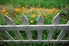 Blumen und weißer Zaun Stockfotografie