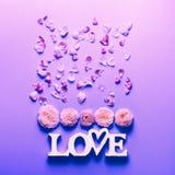 Blumen und Wortliebe auf Neonfarbhintergrund Festliches Blumenkonzept, Draufsicht Flache Lage stockfoto
