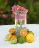 Blumen und Zitrusfrucht Stockfotos