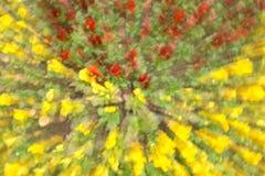 Blumen in Unschärfe ligh in Gelbem und in Rotem Stockfotografie